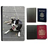 hello-mobile Muster PU Passdecke Inhaber // M00135788 Border Collie Holzbrücke Liegender Hund // Universal passport leather cover