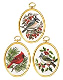 Janlynn Winter Birds Stickpackung, Multi