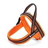 Rantow 3M Night Safety Reflektierendes Hundegeschirre Kein Zug Einstellbare Hundeweste Harness Soft Mesh Katzengeschirre für Large / Medium / Small Hunde, Orange (XL (67-90cm))