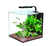 Interpet Nano LED-Aquarium-Komplettset