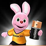Duracell Plus Power Typ C Alkaline Batterien, 4er Pack