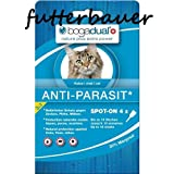 Bogadual Anti-Parasit spot on Katze, 4X0.75 ml