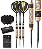 Red Dragon Golden Eyes 1: 24g - 85% Tungsten Darts (Steel Dartpfeile) mit Flights, Schäfte, Brieftasche; Red Dragon Checkout Card