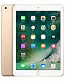 Apple iPad mit WiFi, 32 GB, gold