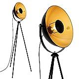 Briloner Leuchten - LED Stehleuchte, Stehlampe, Studiolampe, Studioleuchte,...