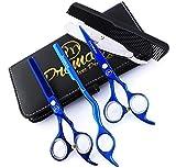 ProMax 11-4635 Friseurscheren-Set, 5-teilig, aus japanischem blauem Titan-Edelstahl, mit...