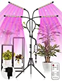 TASMOR LED Pflanzenlampe mit Ständer, 80W 4 Heads LED Pflanzenlicht 360°Einstellbar mit...
