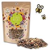 500g Blumenwiese Samen für eine bunte Bienenweide - Farbenfrohe & nektarreiche...