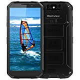 (2019) Blackview BV9500Plus Outdoor Handy Wasserdicht, 10000mAh Kabellose Batterie, Helio P70 4GB RAM+64GB ROM Android 9.0 Robuste Smartphone, 5.7 Zoll Display mit 16MP+13MP Dual Kameras, 4G Globales