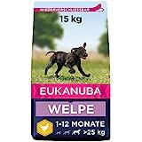 Eukanuba Welpenfutter mit frischem Huhn für große Rassen - Premium Trockenfutter für...