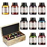 GCQUILL Kalligraphie Tuschen Set 10 Farben in 21 ml Flaschen, untereinander mischbar,...