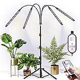 CXhome Vollspektrum LED Pflanzenlampe mit Ständer, RF-Fernbedienung & Zeilengesteuerte...