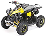 Actionbikes Motors Mini Kinder Quad ATV RENEBLADE 49cc 2-Takt Pocket Quad - Original Easy Pull Starter - Notaus Leine - Kinder Pocketquad (Schwarz/Gelb)