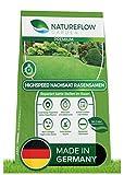 Natureflow Premium Rasen Nachsaat - Besonders Schnellkeimende Rasensamen - Zuverlässige...