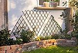 3X Wand-Rankgitter Triangle aus Weide, braun, Rankhilfe für Wein, Efeu, Rosen,...
