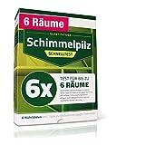Schimmeltest Wohnung – Schimmeltester für 6 Räume – Schimmelpilz Schnelltest mit...