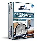 Raumluft-Schimmel-Test – Labortest für 1 Raum – professionelle Schimmelanalyse im...